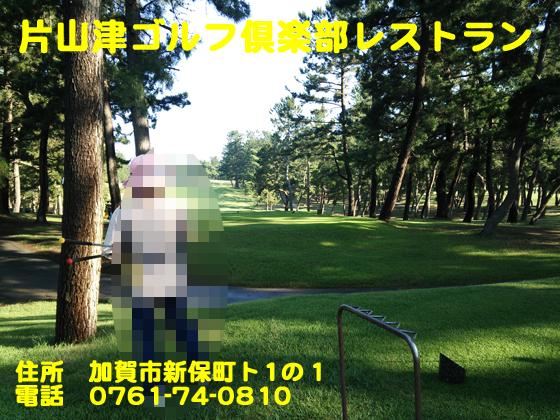 https://cdn-ak.f.st-hatena.com/images/fotolife/d/dreammiminabe53/20010101/20010101151210.jpg