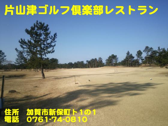 https://cdn-ak.f.st-hatena.com/images/fotolife/d/dreammiminabe53/20010101/20010101235445.jpg