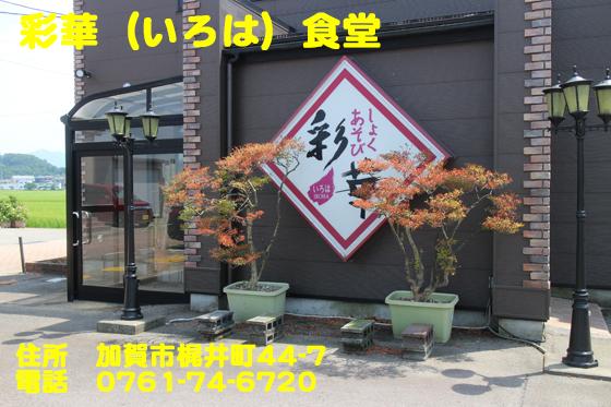 https://cdn-ak.f.st-hatena.com/images/fotolife/d/dreammiminabe53/20010103/20010103011100.jpg