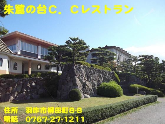https://cdn-ak.f.st-hatena.com/images/fotolife/d/dreammiminabe53/20010103/20010103060510.jpg