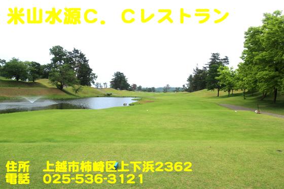 https://cdn-ak.f.st-hatena.com/images/fotolife/d/dreammiminabe53/20010103/20010103131230.jpg
