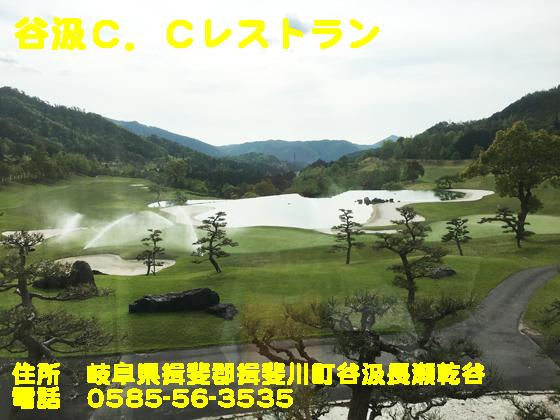 https://cdn-ak.f.st-hatena.com/images/fotolife/d/dreammiminabe53/20010103/20010103135640.jpg