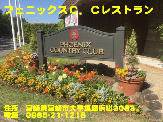 https://cdn-ak.f.st-hatena.com/images/fotolife/d/dreammiminabe53/20010103/20010103151510.jpg