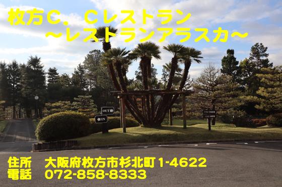 https://cdn-ak.f.st-hatena.com/images/fotolife/d/dreammiminabe53/20010103/20010103151800.jpg