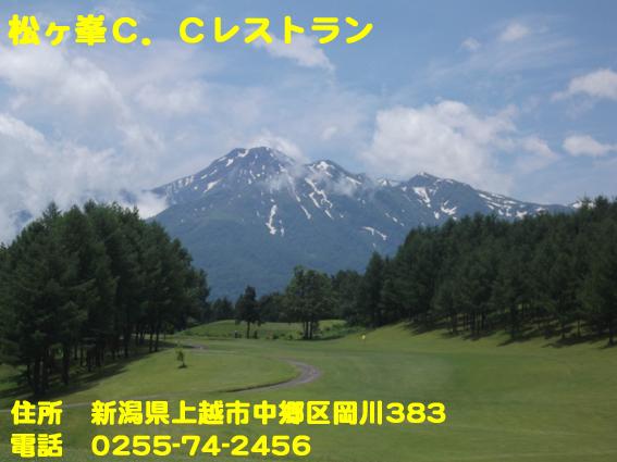 https://cdn-ak.f.st-hatena.com/images/fotolife/d/dreammiminabe53/20010103/20010103154140.jpg