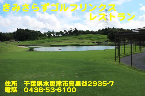 https://cdn-ak.f.st-hatena.com/images/fotolife/d/dreammiminabe53/20010103/20010103190840.jpg