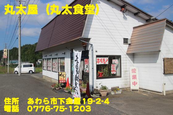 https://cdn-ak.f.st-hatena.com/images/fotolife/d/dreammiminabe53/20010104/20010104102620.jpg
