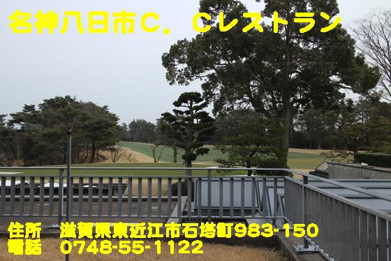 https://cdn-ak.f.st-hatena.com/images/fotolife/d/dreammiminabe53/20010104/20010104225010.jpg