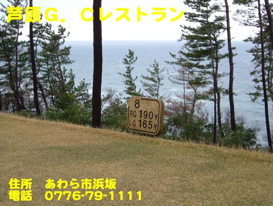 f:id:dreammiminabe53:20201111085045j:plain