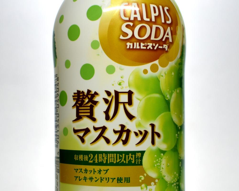 カルピスソーダ贅沢マスカット