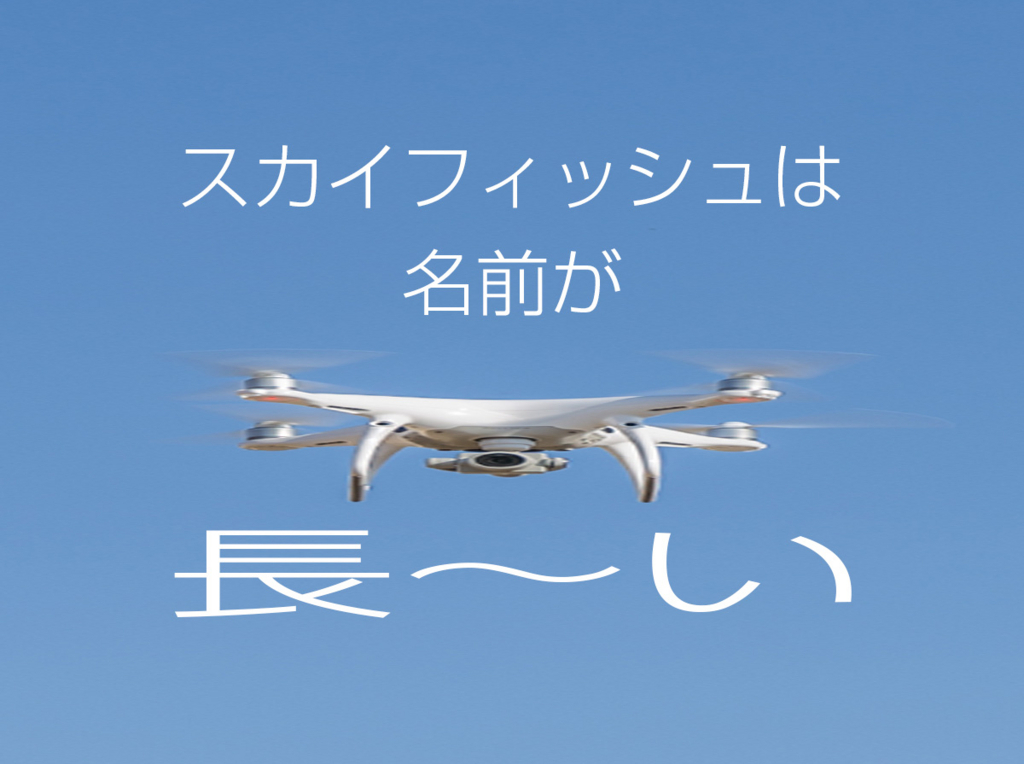 f:id:drone_skyfish:20171012113845j:plain