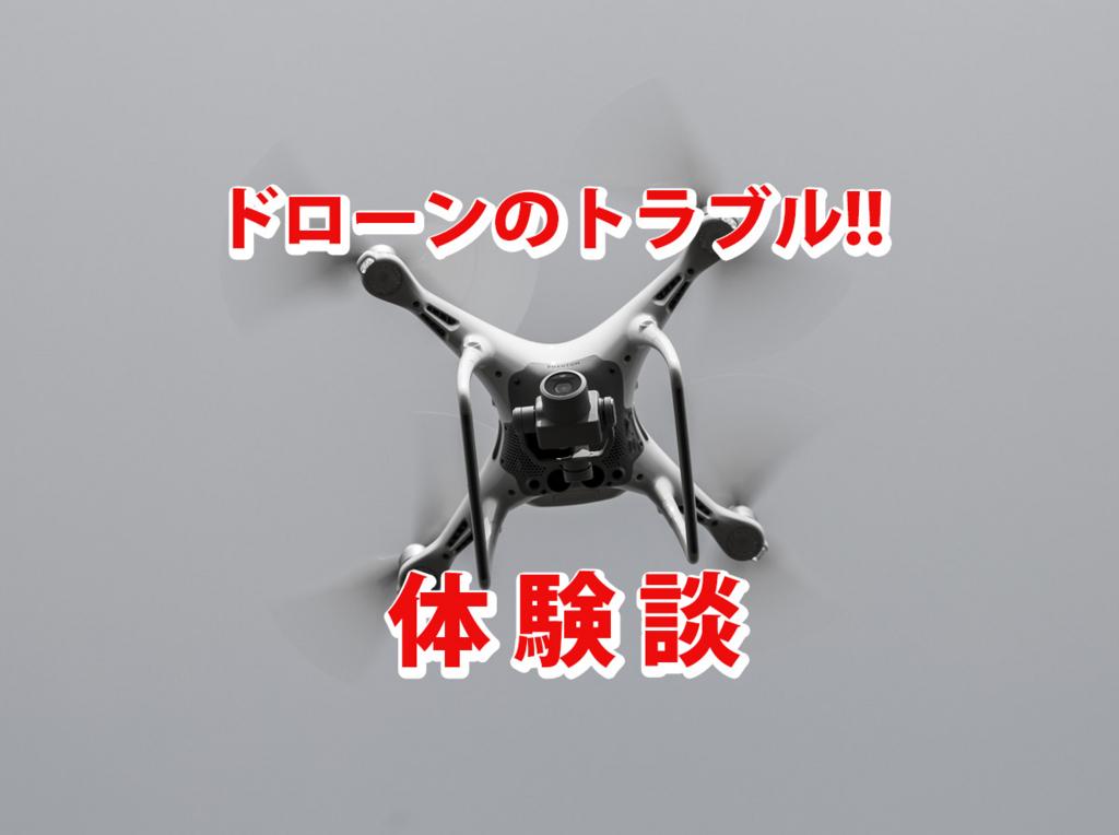 f:id:drone_skyfish:20171114173130j:plain