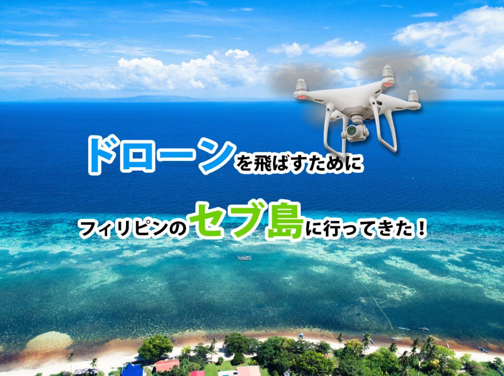f:id:drone_skyfish:20171118165332j:plain