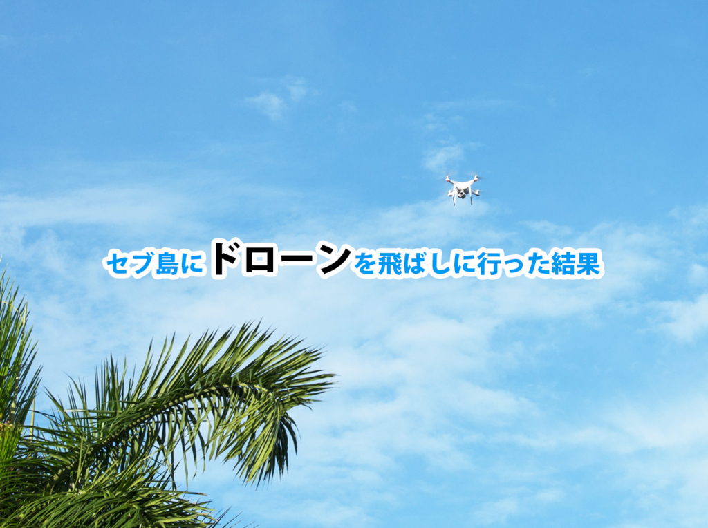 f:id:drone_skyfish:20171122103837j:plain