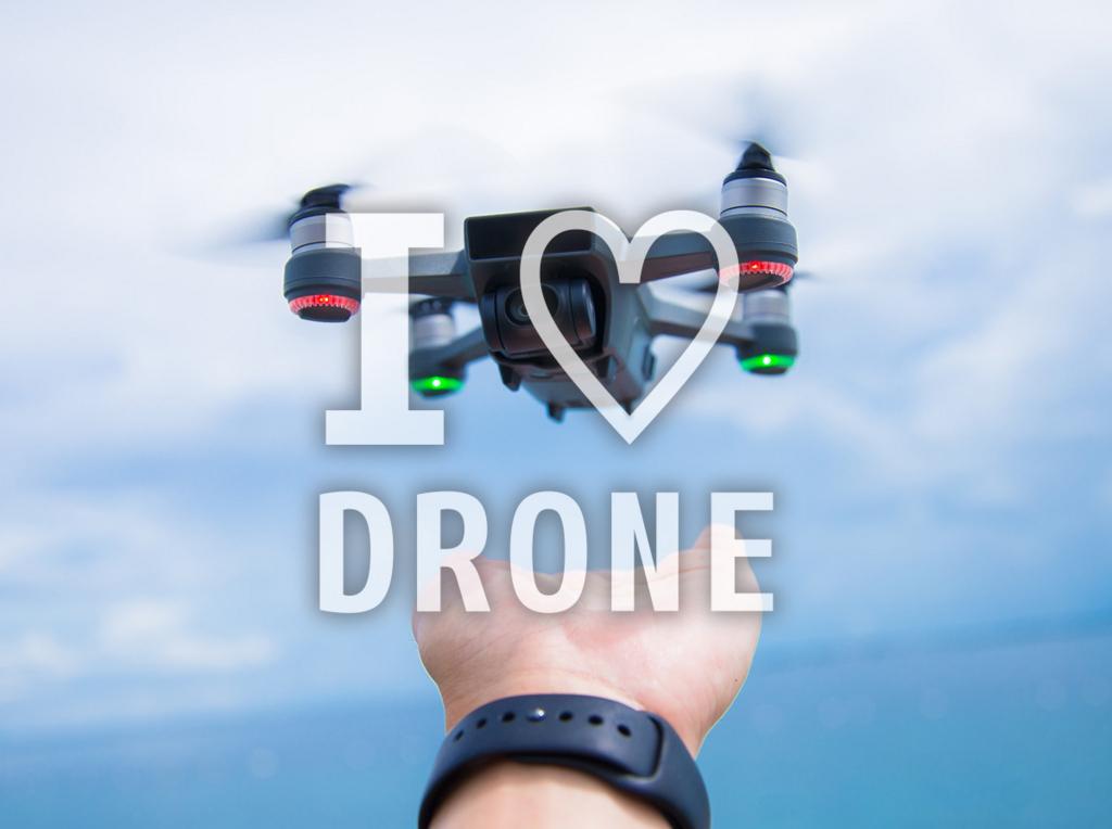 f:id:drone_skyfish:20171207201233j:plain