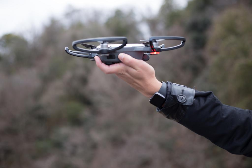 f:id:drone_skyfish:20180102202942j:plain
