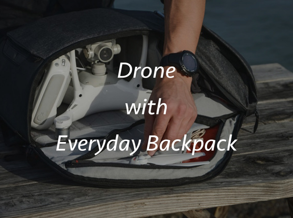 f:id:drone_skyfish:20180122140245j:plain