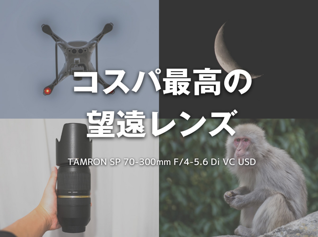f:id:drone_skyfish:20180206181921j:plain
