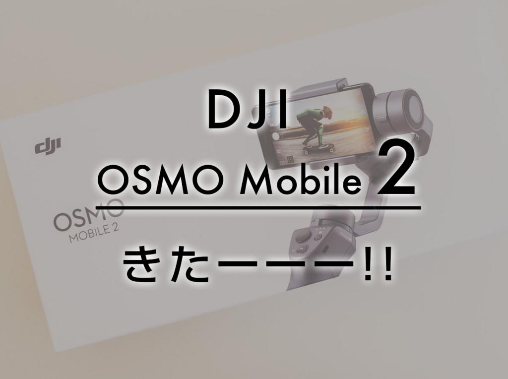 f:id:drone_skyfish:20180208134504j:plain