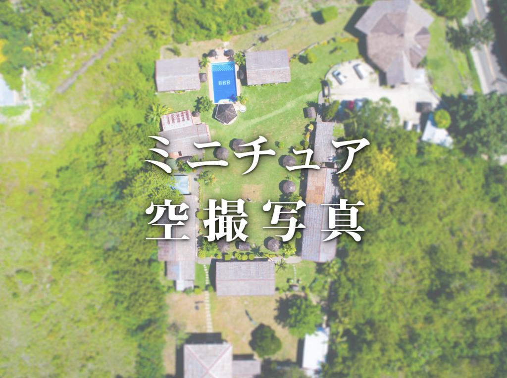 f:id:drone_skyfish:20180307194933j:plain