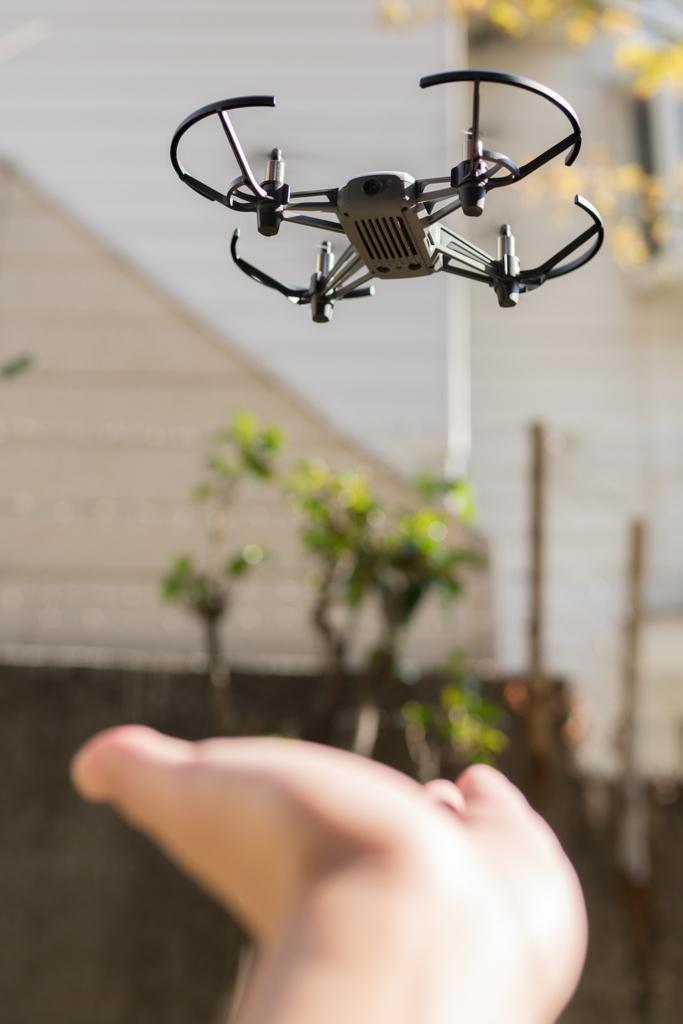 f:id:drone_skyfish:20180325172701j:plain
