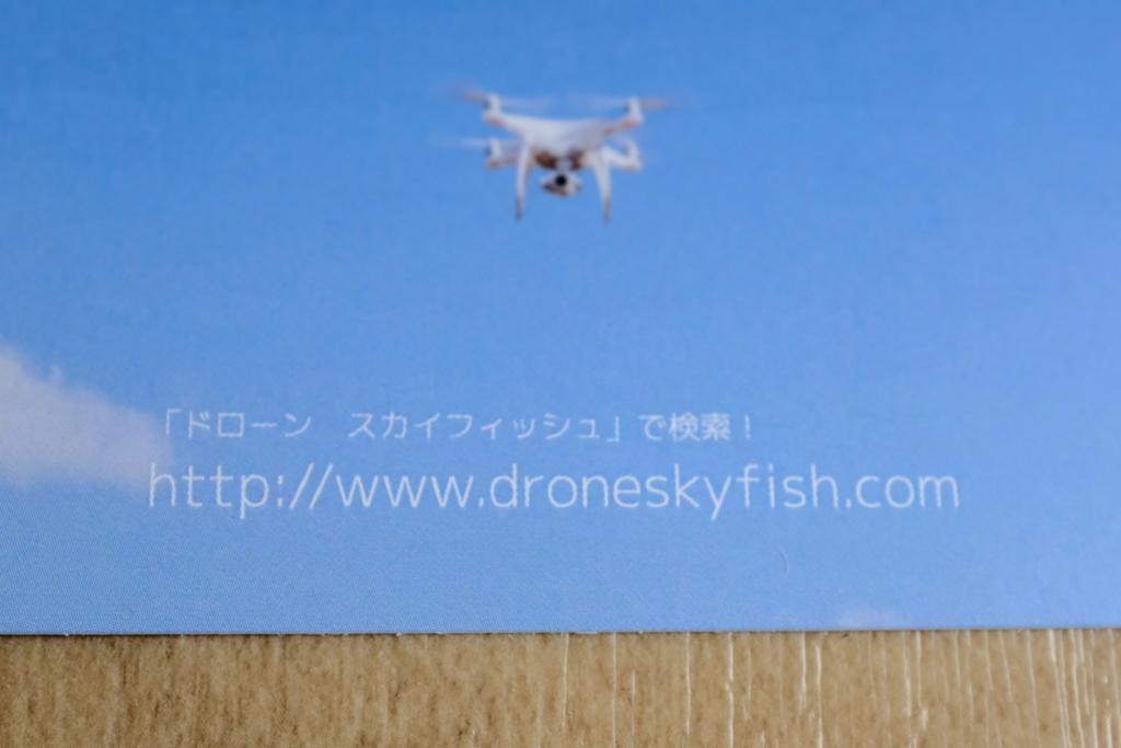 f:id:drone_skyfish:20180529102332j:plain
