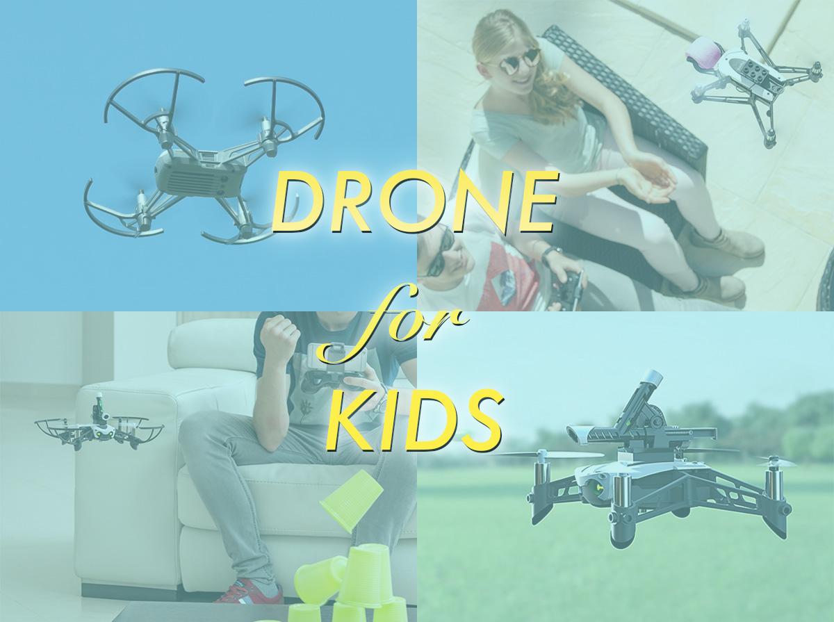 f:id:drone_skyfish:20180714144052j:plain