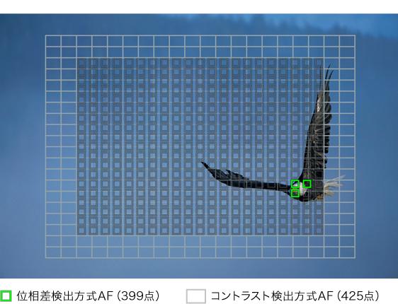 f:id:drone_skyfish:20180725013645j:plain
