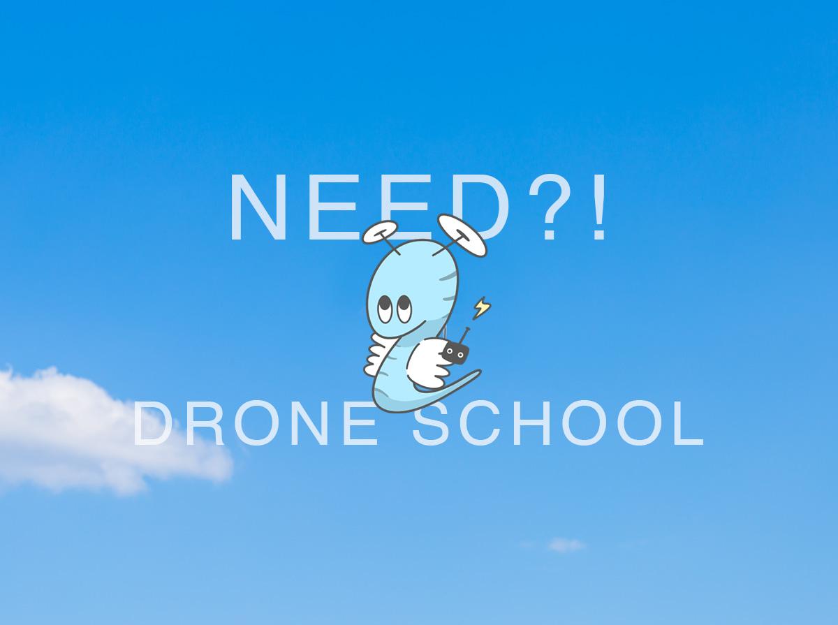 f:id:drone_skyfish:20180727095014j:plain