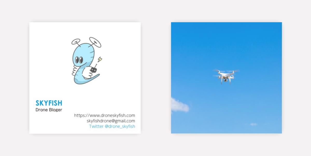 f:id:drone_skyfish:20180806095849p:plain