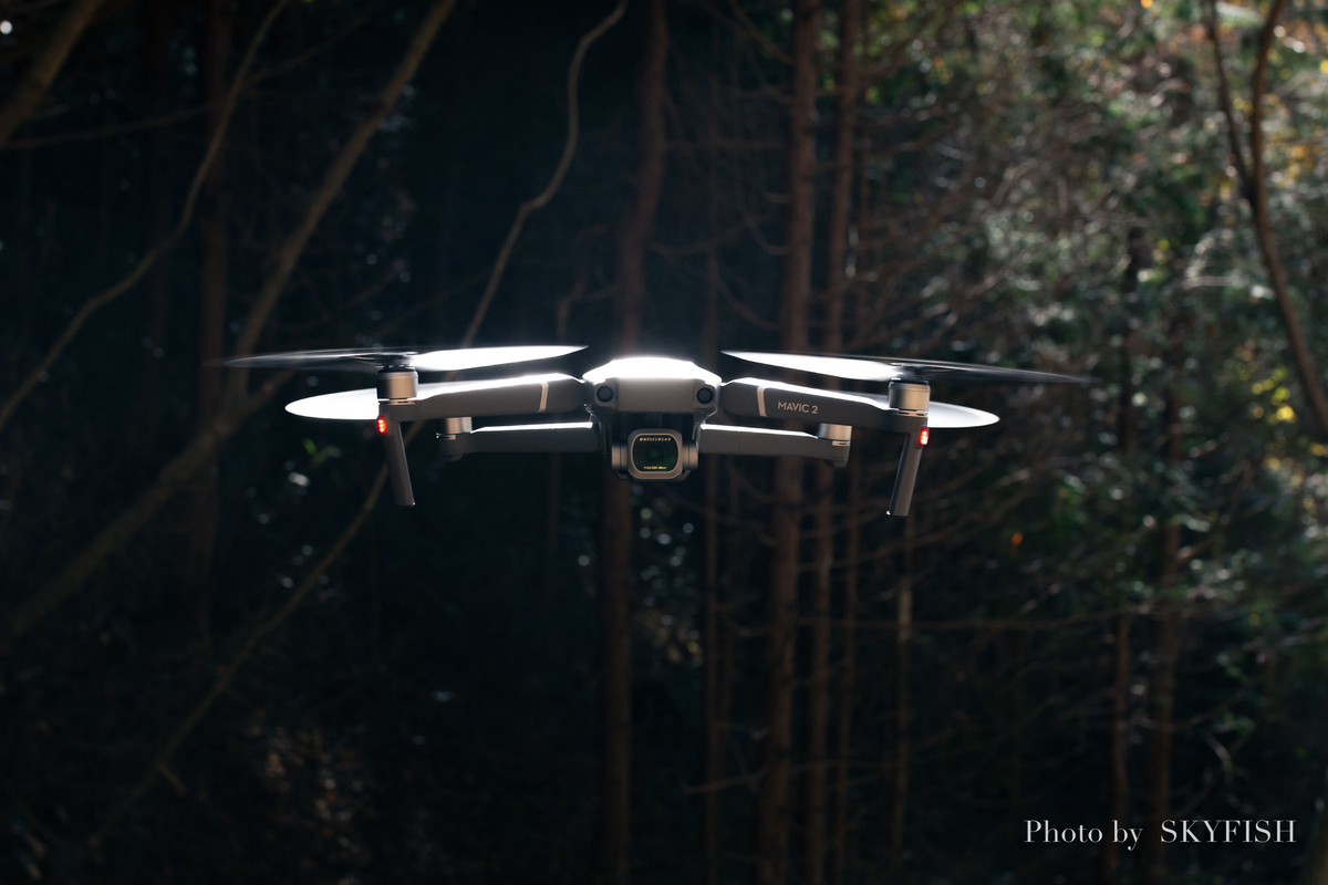 f:id:drone_skyfish:20181115020015j:plain