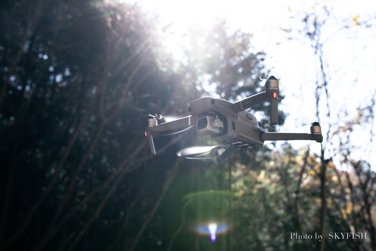 f:id:drone_skyfish:20181115020020j:plain