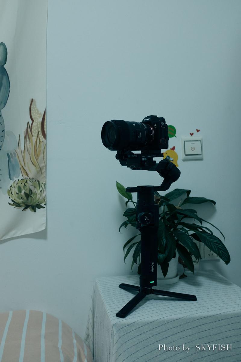 カメラとRonin-s