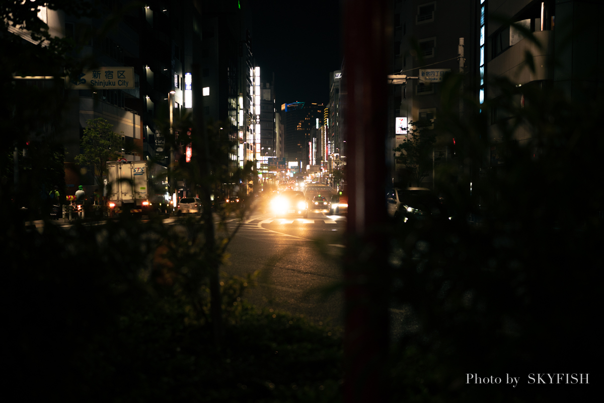 SIGMA 45mm F2.8 DG DN | Contemporaryの作例