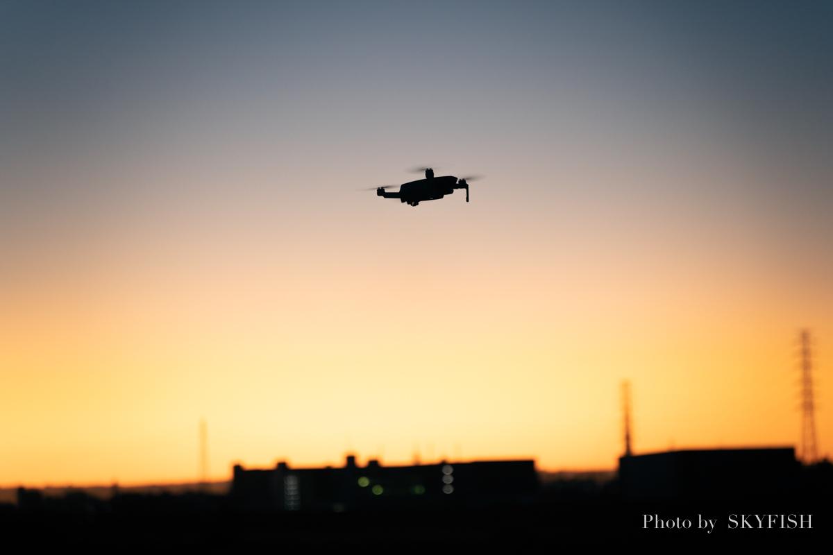 f:id:drone_skyfish:20191130145647j:plain