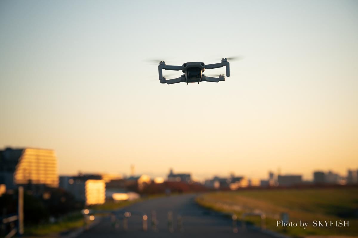 f:id:drone_skyfish:20191130145744j:plain