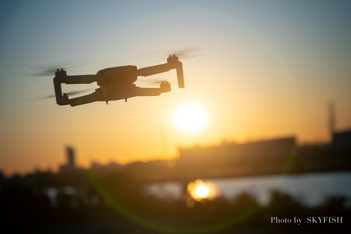 f:id:drone_skyfish:20191130145754j:plain
