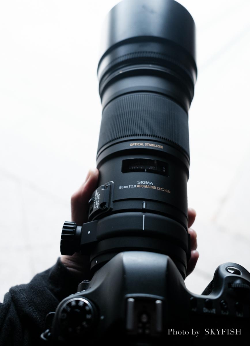 SIGMA APO MACRO 180mm F2.8 EX DG OS HSMの写真
