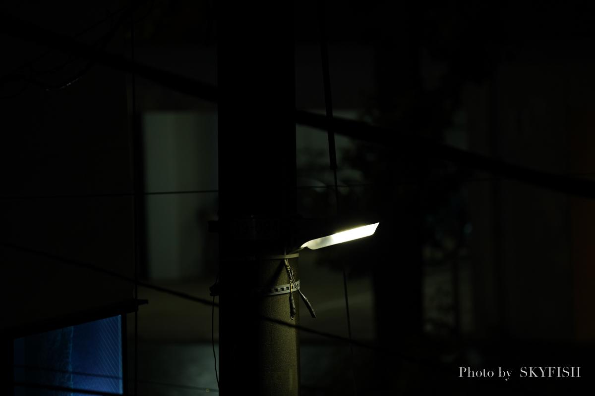 SIGMA ミラーレス専用レンズ 100-400mm F5-6.3 DG DN OS で撮影
