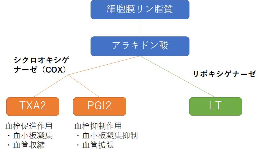 f:id:drtottoco:20210212000117p:plain
