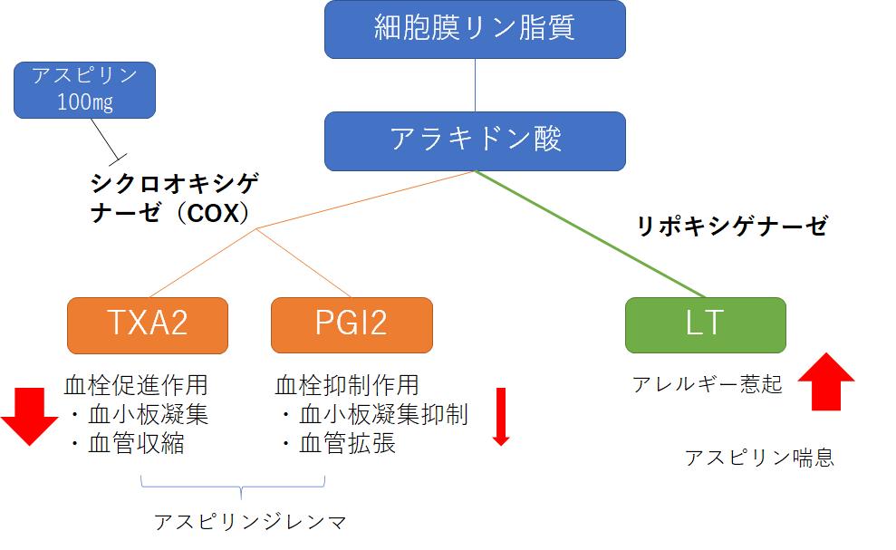 f:id:drtottoco:20210212000901p:plain
