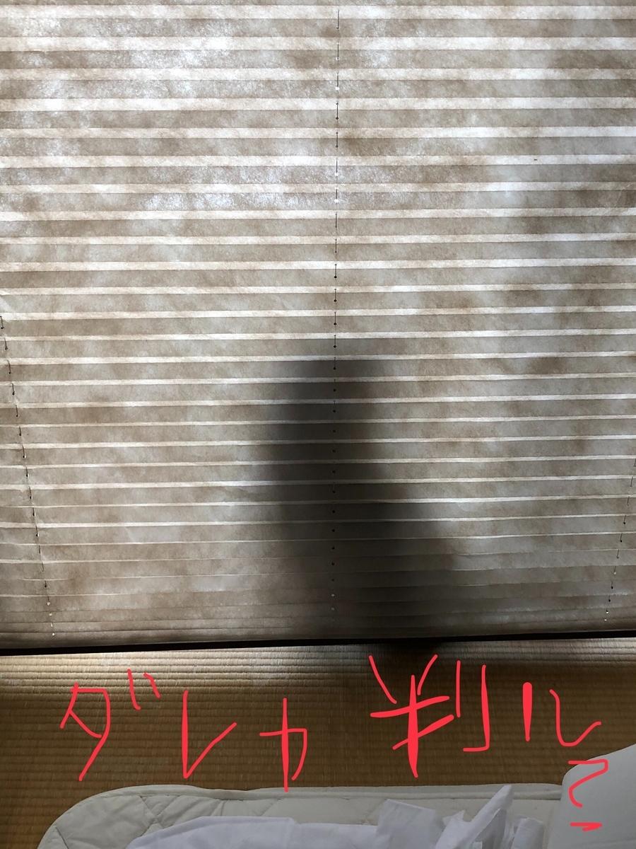 f:id:drunkard_kim:20191113075043j:plain
