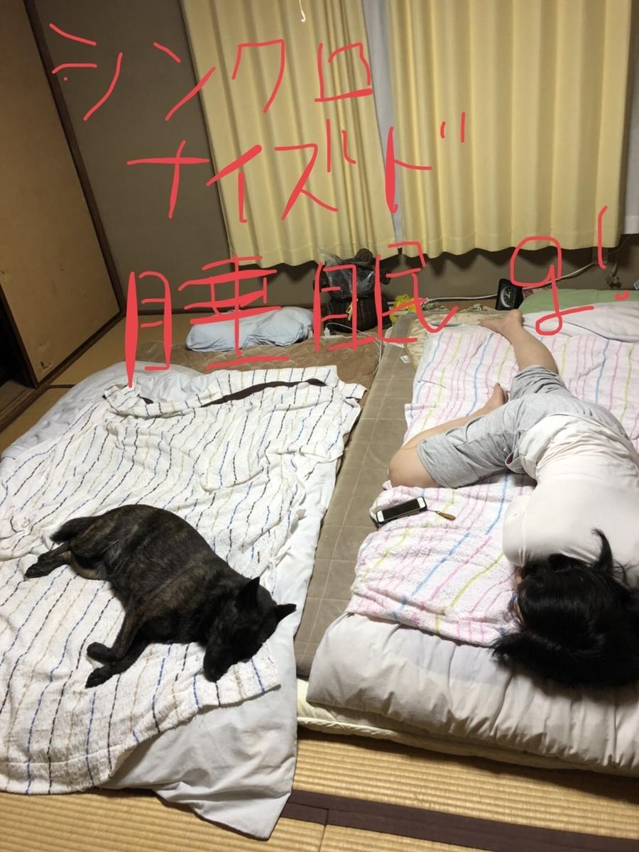 f:id:drunkard_kim:20200530085018j:plain