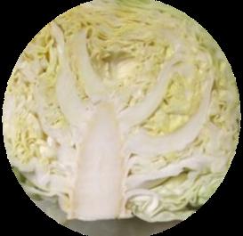 f:id:drymon-kanmiya:20210130114644p:plain