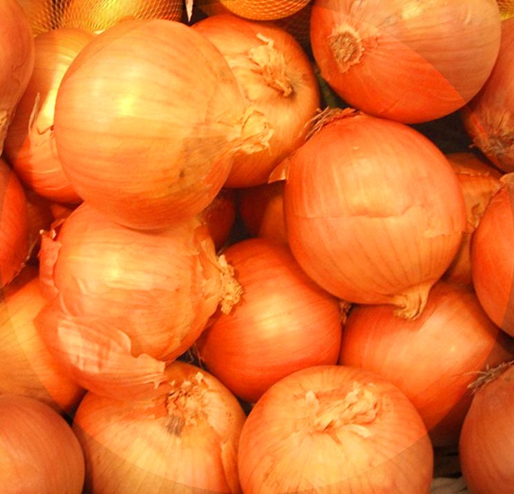 f:id:drymon-kanmiya:20210130114941p:plain