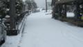 雪が降ったので写真とってみた