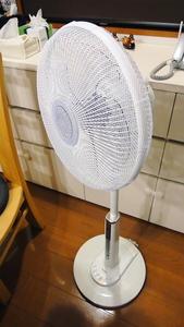DSC-TX5 赤ん坊カンパニー フルカバー扇風機ネット(2012.05.29)