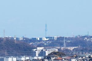 Canon EOS 5D MarkII & EF70-200mm F4L IS USM 東京スカイツリー(2011.01.30)