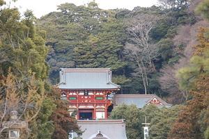 Canon EOS 5D MarkII & EF70-200mm F4L IS USM 鶴岡八幡宮(2011.01.30)
