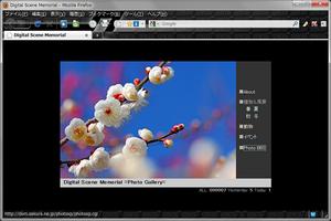 Mozilla Firefox 3.6(2010.01.31)